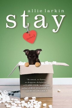 paper-stay-cover